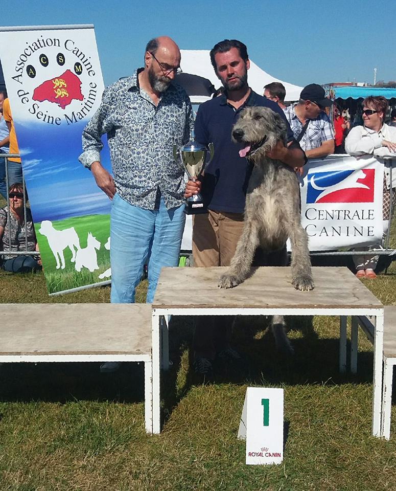 Exposition de Dieppe : juillet 2016 - Meilleur de groupe