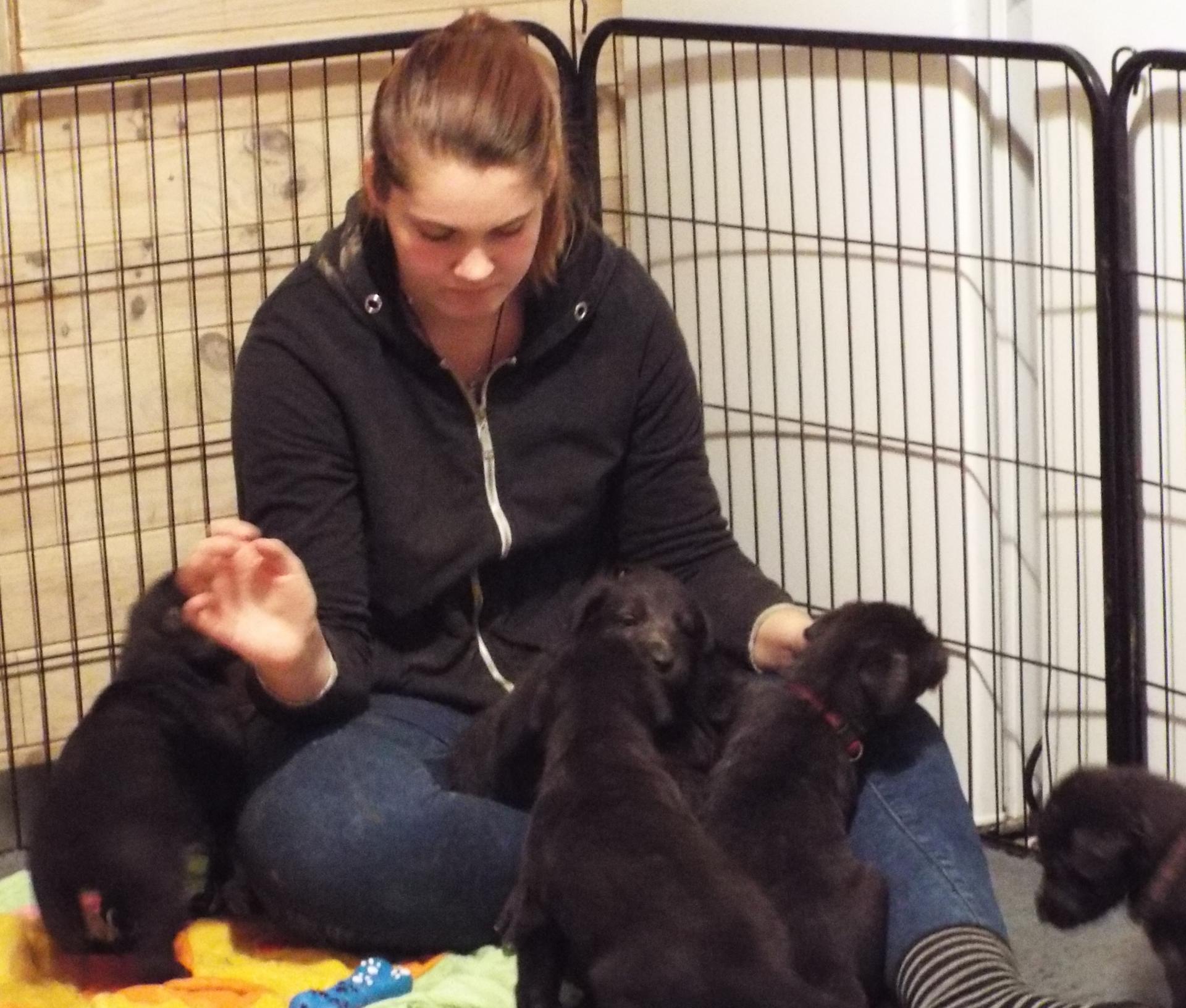 30/11/18 : Les puppies ont 1 mois